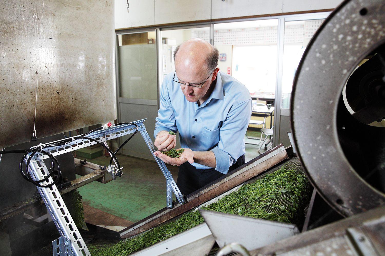 Markus Hastenpflug kostet die frisch gedämpften Teeblätter